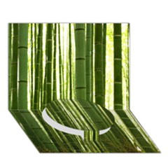 Bamboo Grove 2 Circle Bottom 3d Greeting Card (7x5)