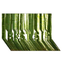 BAMBOO GROVE 2 BEST SIS 3D Greeting Card (8x4)