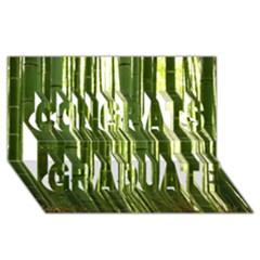 Bamboo Grove 2 Congrats Graduate 3d Greeting Card (8x4)
