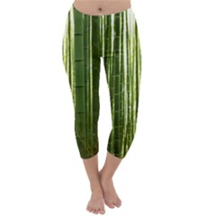 BAMBOO GROVE 2 Capri Winter Leggings