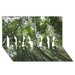 Bamboo Grove 1 Best Sis 3d Greeting Card (8x4)