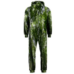 BAMBOO GROVE 1 Hooded Jumpsuit (Men)