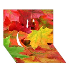 Autumn Leaves 1 Apple 3d Greeting Card (7x5)