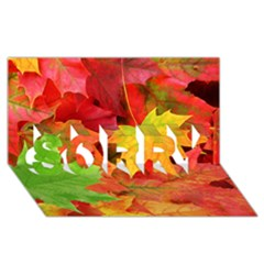 Autumn Leaves 1 Sorry 3d Greeting Card (8x4)