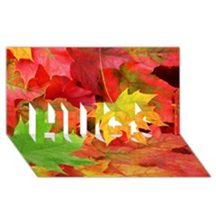 Autumn Leaves 1 Hugs 3d Greeting Card (8x4)