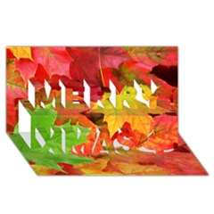 Autumn Leaves 1 Merry Xmas 3d Greeting Card (8x4)