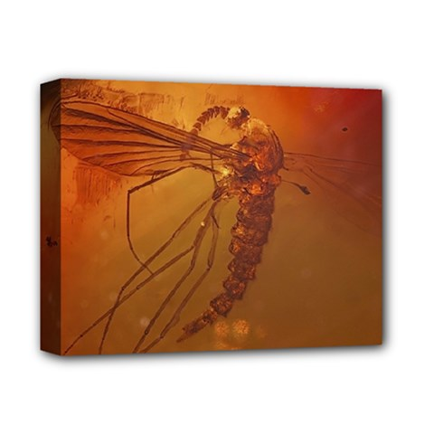 MOSQUITO IN AMBER Deluxe Canvas 14  x 11