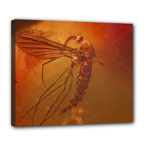 MOSQUITO IN AMBER Deluxe Canvas 24  x 20