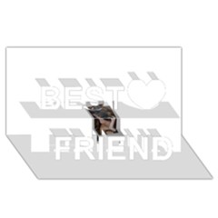 Chipped Best Friends 3d Greeting Card (8x4)