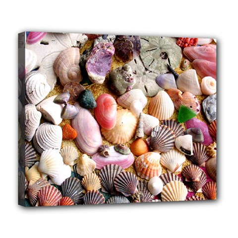 COLORFUL SEA SHELLS Deluxe Canvas 24  x 20