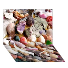 COLORFUL SEA SHELLS Heart Bottom 3D Greeting Card (7x5)