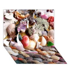 Colorful Sea Shells Apple 3d Greeting Card (7x5)