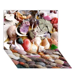 Colorful Sea Shells Clover 3d Greeting Card (7x5)