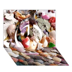 Colorful Sea Shells Peace Sign 3d Greeting Card (7x5)