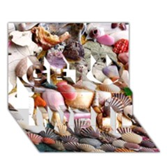 COLORFUL SEA SHELLS Get Well 3D Greeting Card (7x5)