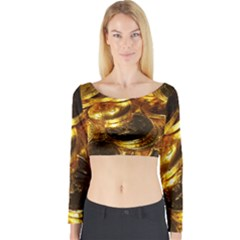 GOLD COINS 1 Long Sleeve Crop Top