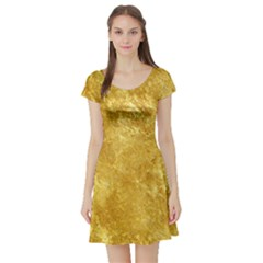 GOLD Short Sleeve Skater Dresses