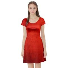 CRUSHED RED VELVET Short Sleeve Skater Dresses