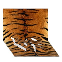 Tiger Fur Love Bottom 3d Greeting Card (7x5)