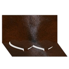 Horse Fur Twin Heart Bottom 3d Greeting Card (8x4)