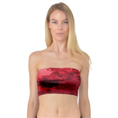 Red Tinted Roses Collage 2 Women s Bandeau Tops