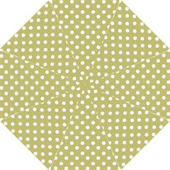 Lime Green Polka Dots Hook Handle Umbrellas (Small)