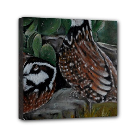 Bobwhite Quails Mini Canvas 6  X 6