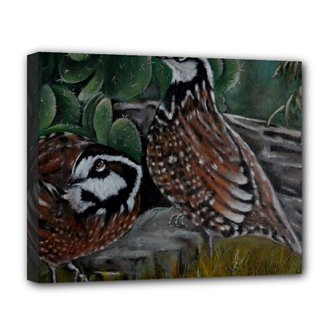 Bobwhite Quails Deluxe Canvas 20  x 16