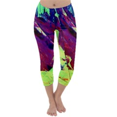 Abstract Painting Blue,Yellow,Red,Green Capri Winter Leggings