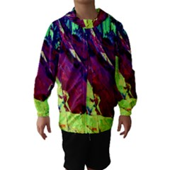 Abstract Painting Blue,Yellow,Red,Green Hooded Wind Breaker (Kids)