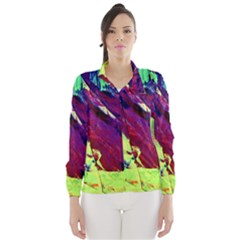Abstract Painting Blue,yellow,red,green Wind Breaker (women)