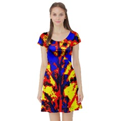 Fire Tree Pop Art Short Sleeve Skater Dresses