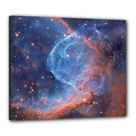 Thor s Helmet Canvas 24  X 20