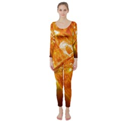 Solar Flare 2 Long Sleeve Catsuit