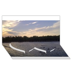 Intercoastal Seagulls 3 Twin Heart Bottom 3D Greeting Card (8x4)