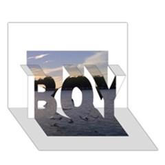 Intercoastal Seagulls 3 Boy 3d Greeting Card (7x5)