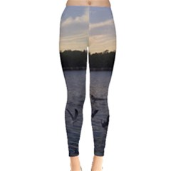 Intercoastal Seagulls 3 Women s Leggings