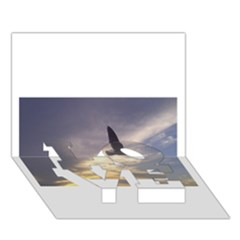 Fly Seagull Love Bottom 3d Greeting Card (7x5)