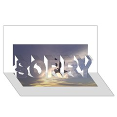 Fly Seagull SORRY 3D Greeting Card (8x4)