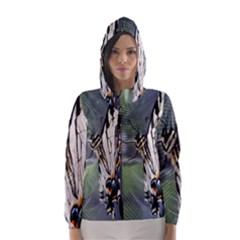 Butterfly 1 Hooded Wind Breaker (Women)