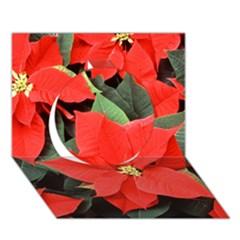 Poinsettia Circle 3d Greeting Card (7x5)