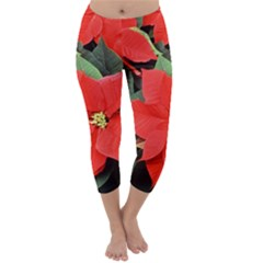 POINSETTIA Capri Winter Leggings
