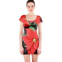 POINSETTIA Short Sleeve Bodycon Dresses