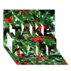 Holly 2 Take Care 3d Greeting Card (7x5)