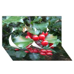 Holly 1 Twin Hearts 3d Greeting Card (8x4)