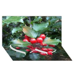 Holly 1 Twin Heart Bottom 3d Greeting Card (8x4)