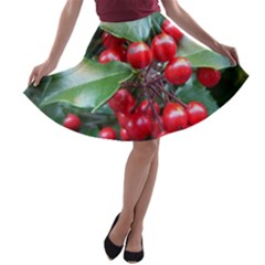 HOLLY 1 A-line Skater Skirt