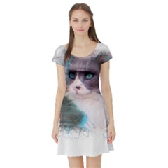 Cat Splash Png Short Sleeve Skater Dresses