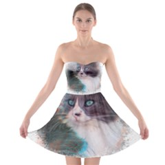 Cat Splash Png Strapless Bra Top Dress