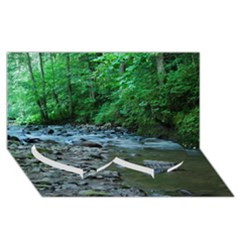 ROCKY STREAM Twin Heart Bottom 3D Greeting Card (8x4)